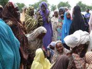 fr.shafaqna - Nigeria : trois terroristes ont tué 13 personnes; nouveau massacre de Boko Haram