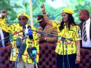 fr.shafaqna - Zimbabwe : « Les militaires sont intervenus par peur que la première dame prenne le pouvoir »