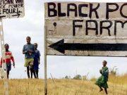 fr.shafaqna - « Le paysan noir est la vraie victime de l'histoire tourmentée du Zimbabwe »