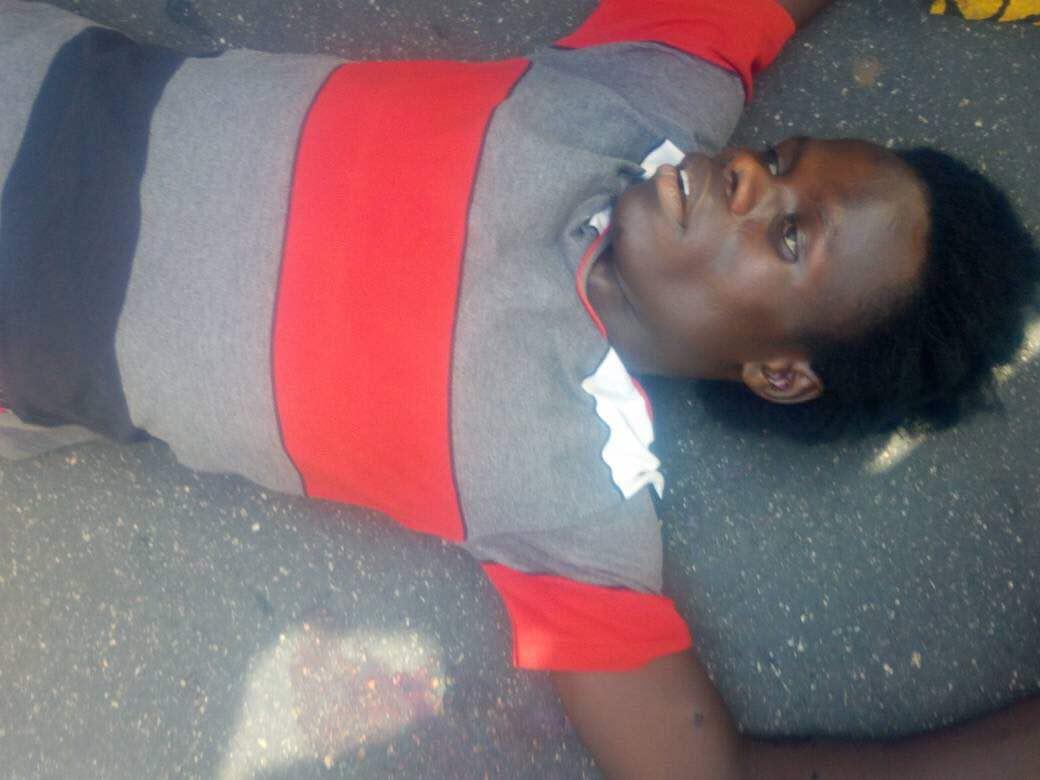 fr.shafaqna - Deux jeunes tués pendant commémoration annuel d'Arbaeen, par police en Nigeria