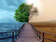 calendrier hégirien calendrier lunaire calendrier musulman Clés des Paradis Les actes recommandés du mois de Cha'bân Les évènements importants du mois de Cha'bân Les mérites du mois de Cha'bân Mafatih Al-Jinan mois de Cha'bân rituels du mois de Cha'bân Sha'bân Ahadith hadîth hadiths Hadith en Francais hadith du prophète narrateur de hadith Zaqqum Tuba Paradis Enfer