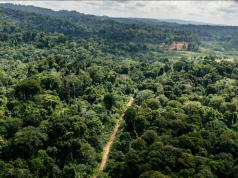 Vue aérienne de la zone de la «Montagne d'Or», où se situe un vaste projet d'exploitation d'une mine d'or actuellement débattu en Guyane, le 12 octobre 2017.   Jody AMIET / AFP