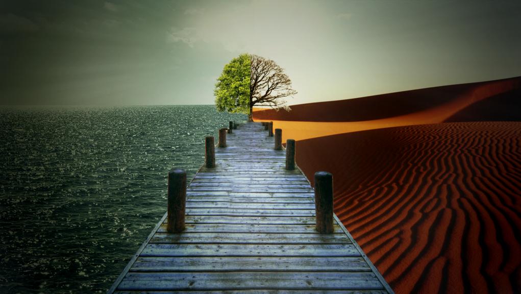 épreuve épreuve divine examens divins pilier de l'islam piliers de la religion questions et réponses questions religieuses Tawhîd Monothéisme connaissance chiite Connaissance coranique connaissance d'Allah connaissance de Dieu connaissances islamiques vie chiite vie musulmane