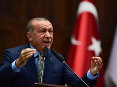 Turquie, Recep Tayyip Erdogan, pays musulmans