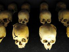 génocide, Rwanda, Belgique