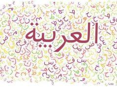 langue française, langue arabe