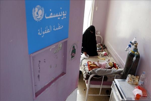Yémen , FAO