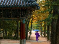 Corée du Sud, islam, musulmans, islamophobie
