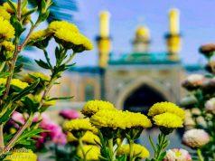 Irak, Sanctuaire sacré de Hazrat Abbas (AS) , Karbala