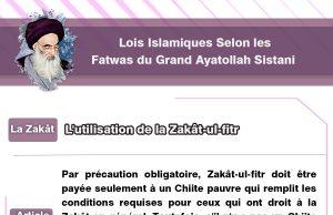 Grand Ayatollah Sistani , Zakât